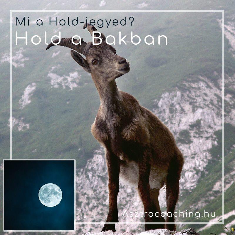 Hold a Bakban