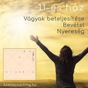 Védikus asztrológia - 11-es ház
